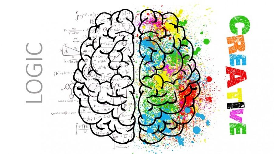 Zaryadi mozg